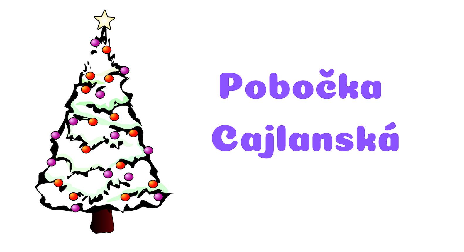 Pobočka Cajlanská počas vianočných sviatkov zatvorená